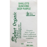 Shallots - Bunching Deep Purple